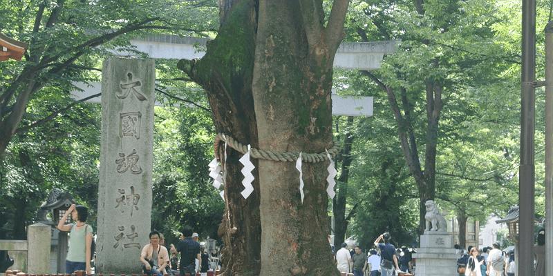 sake_musasinokuni1 (1)