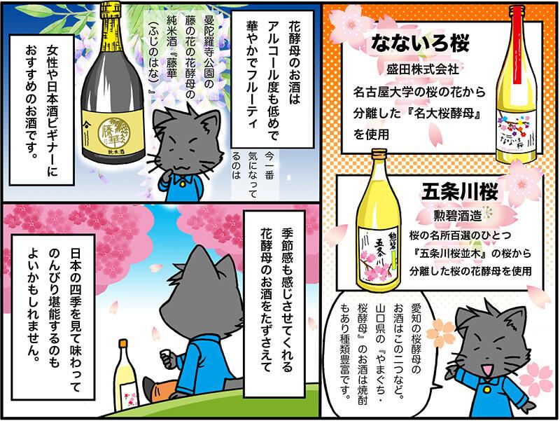 花酵母 桜の酵母を使用した日本酒を紹介している絵
