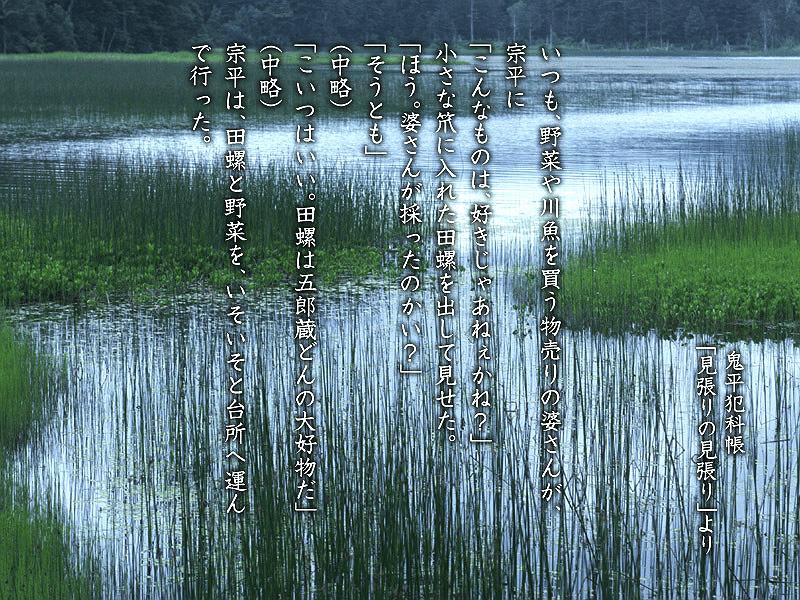sake_g_tanishitonegi_01