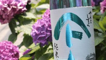 梅雨空で楽しみたい日本酒