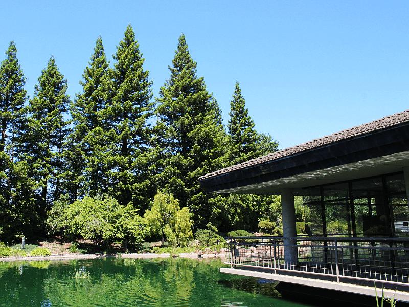米国月桂冠と池、地域の自然との調和