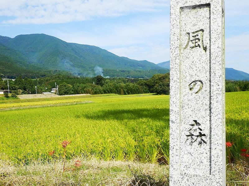 水田の前に立つ「風の森」の石碑