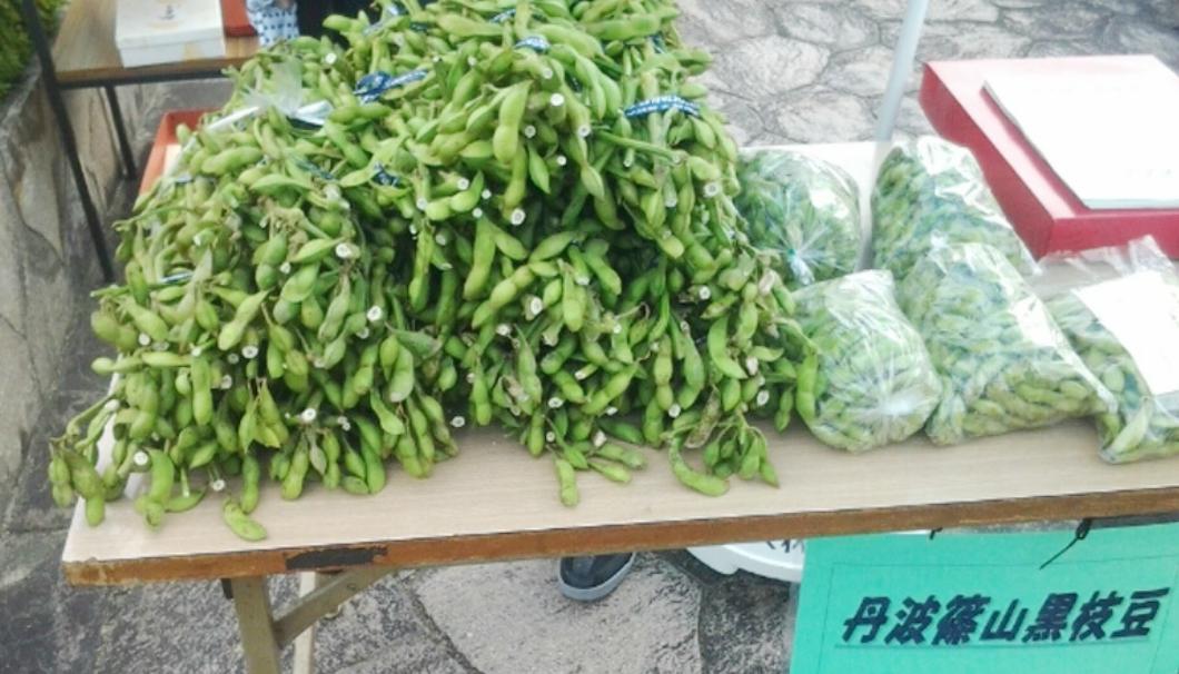 丹波篠山の名産・黒枝豆
