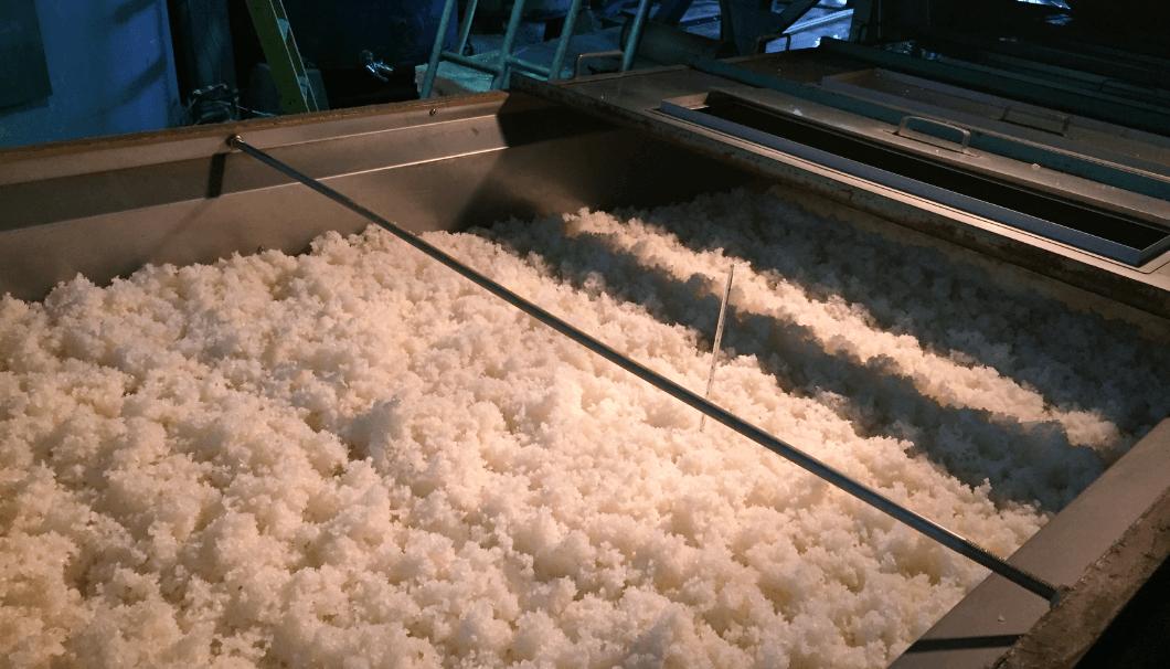 蒸米が運ばれてる放冷機の写真。真ん中には温度計が刺さっている。