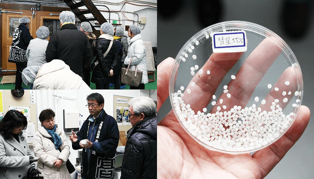 農家の酒プロジェクト2017・精米された酒米