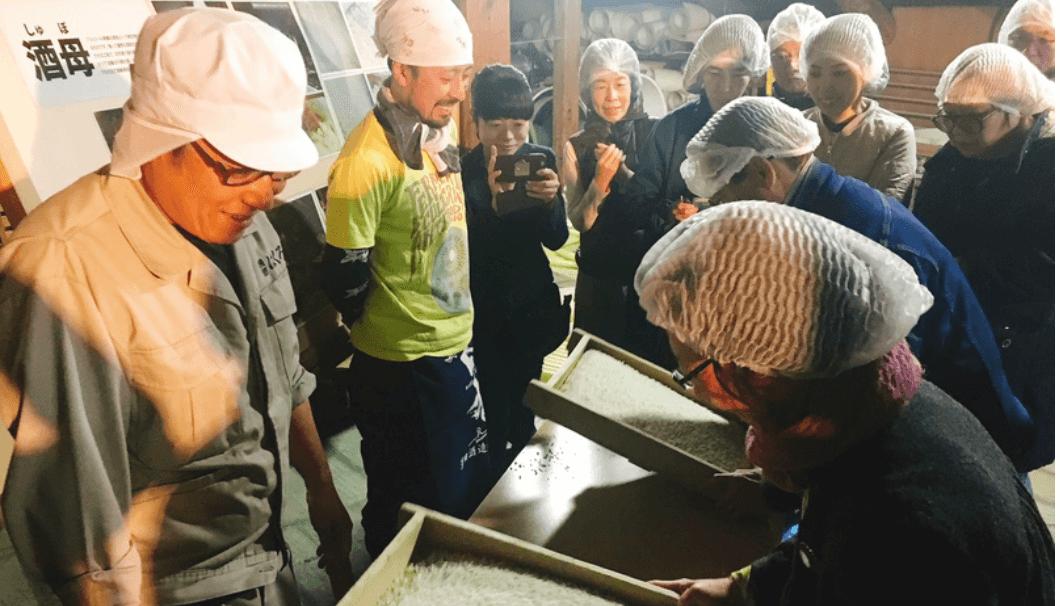 澤田酒造・麹づくり体験