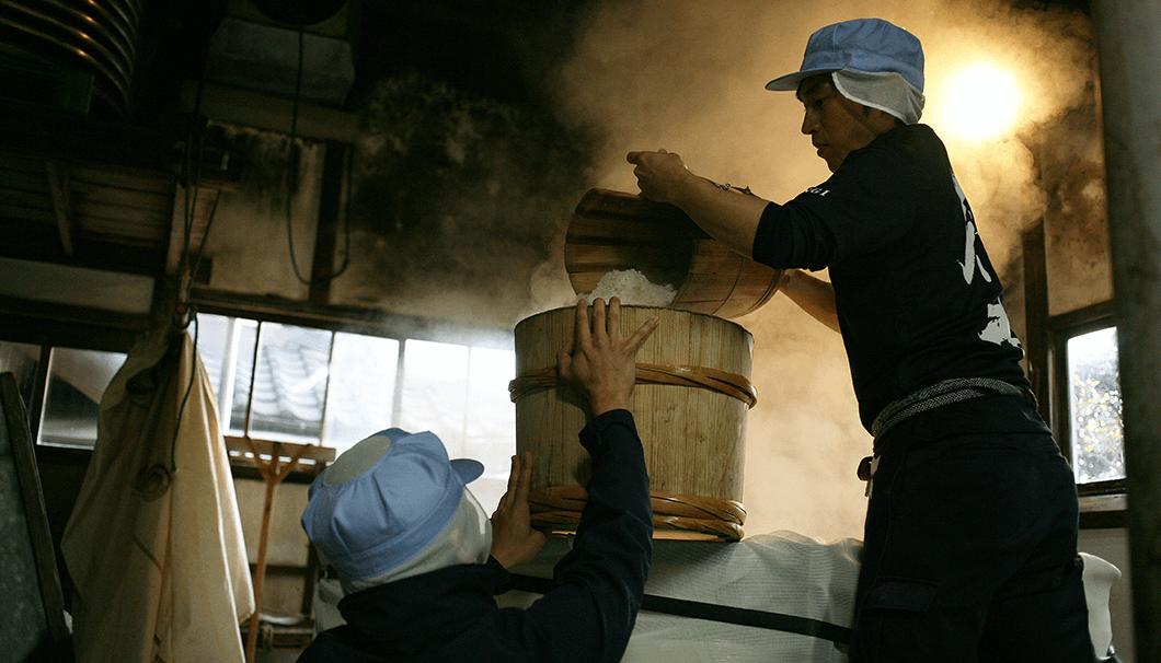 朝一番、八百新酒造では米を蒸す