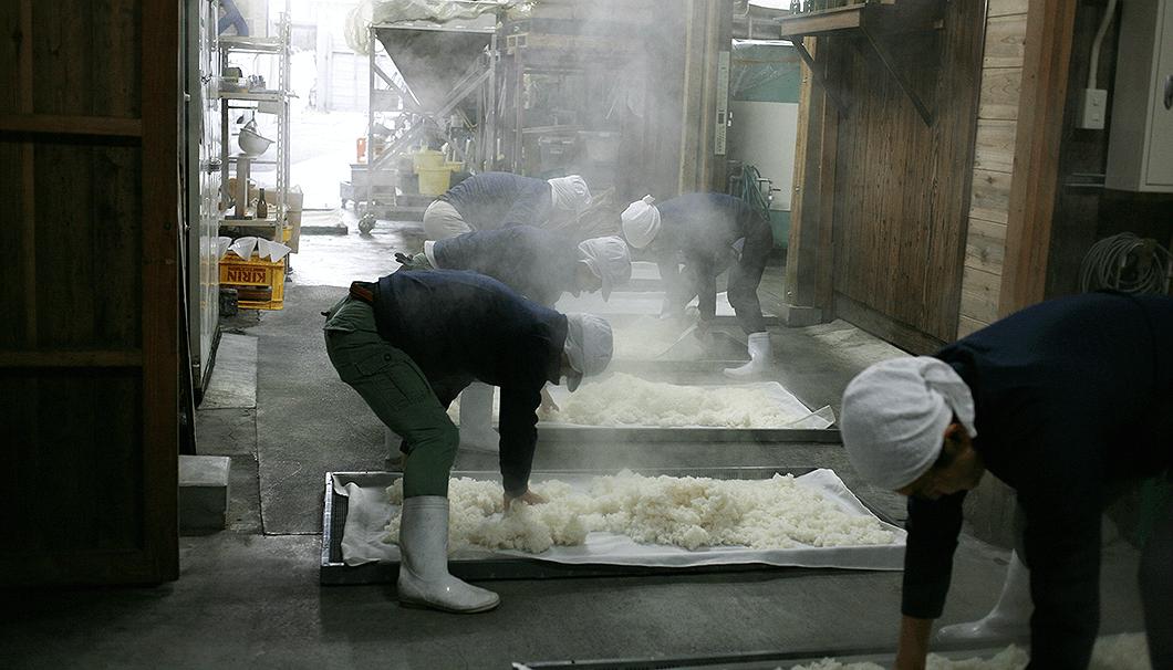 麹米にするものは手作業で放冷し、2階の室へ担いで持っていく