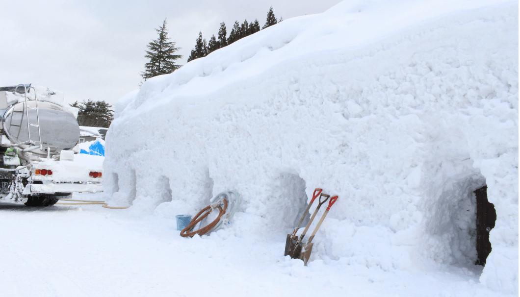 北鹿の「雪中貯蔵」を貯蔵している雪に埋まったタンク