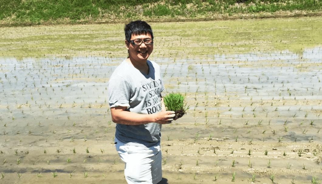 田植えをする台湾出身の蔵人、陳韋仁さん