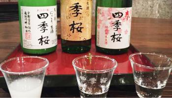 主要銘柄「四季桜(しきさくら)」