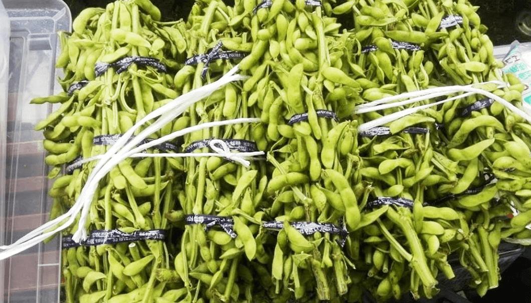 丹波篠山名産の黒豆