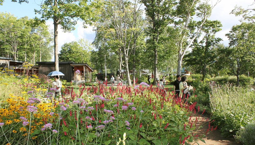 「大雪森のガーデン」の、ほんのり秋色に染まり始めた中庭