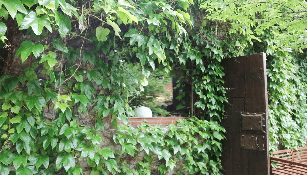 スパニッシュガストロノミーレストラン「ムガリッツ」のq外にあるあずまやの写真