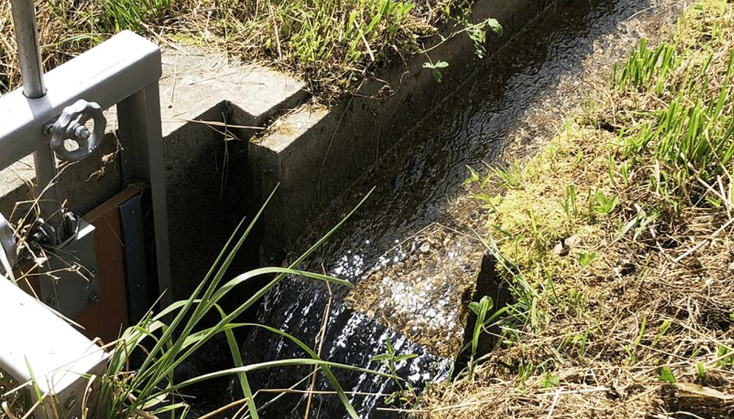 湧き水が流れる愛知県設楽町の水路