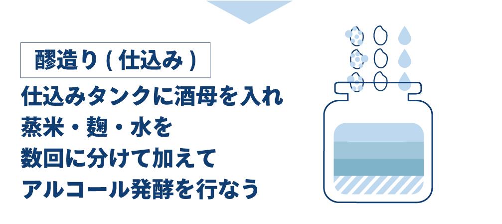 酒造工程6、醪造り(仕込み)。酒母の入ったタンクに、蒸米・麹・水を数回に分けて入れ、アルコール発酵を行う。