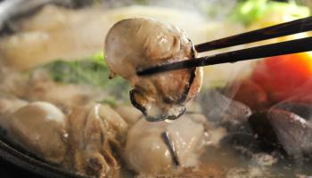 牡蠣鍋からお箸で牡蠣をつまみあげている写真