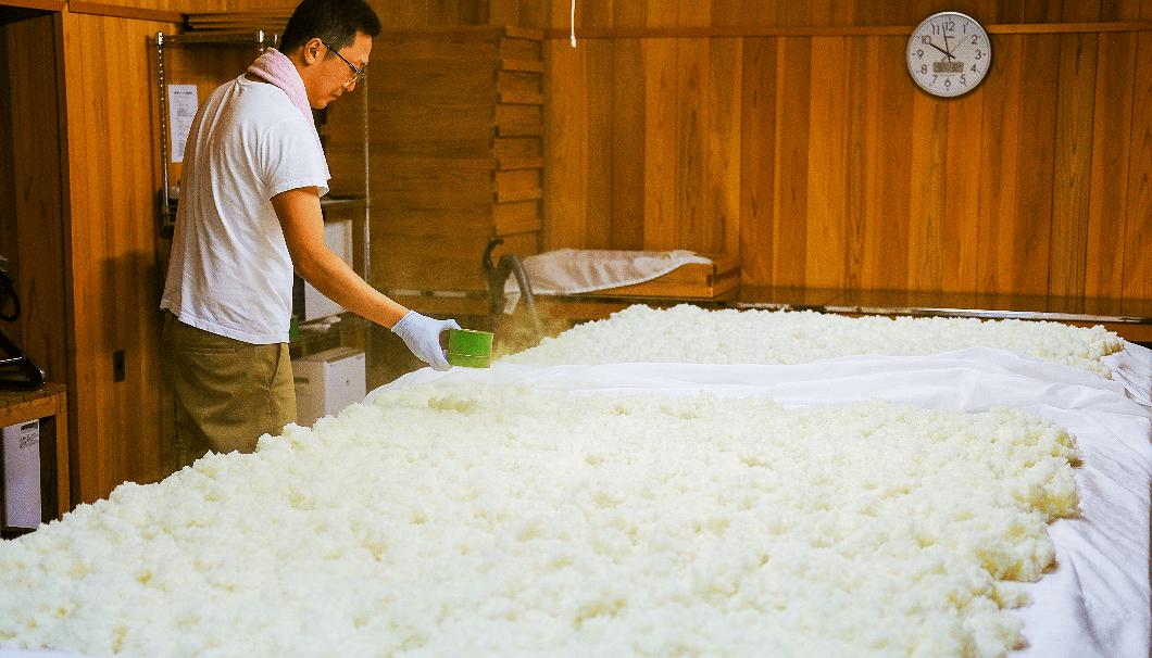 種麹をふる楯の川酒造 社長の佐藤淳平さん