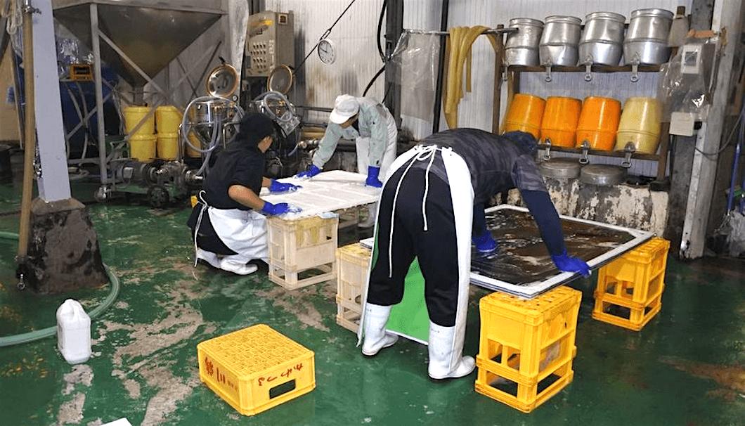 川鶴酒蔵での造りの様子