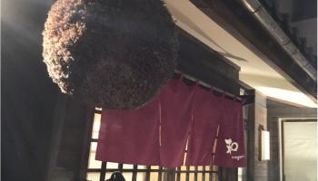 新潟の和食居酒屋「和-なごみ-」の外観写真