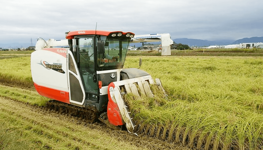 株式会社越乃めぐみの収穫風景