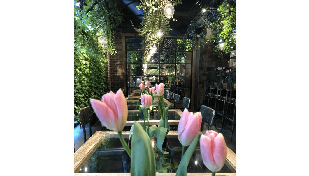 「Flower Sake Night」新潟のチューリップと新潟の日本酒