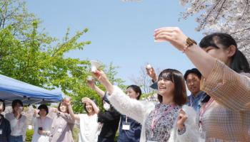 日本酒女子会恒例のお花見会の様子