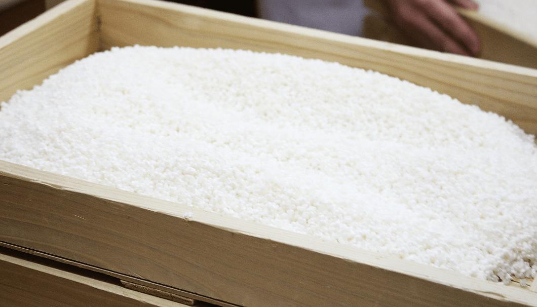 白鶴酒造「天空」の麹造り