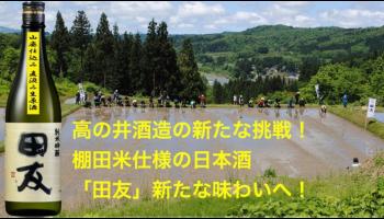 高の井酒造の挑戦!棚田米使用の日本酒「田友山廃仕込」をMakuake先行販売!