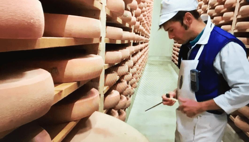 コンテチーズの熟成庫で品質をチェックする熟成師